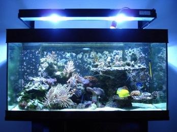 Pumpe Komplett Mit Unterschrank Heizstab Filter Usw Aquarium 200 Ltr Einfach Zu Schmieren