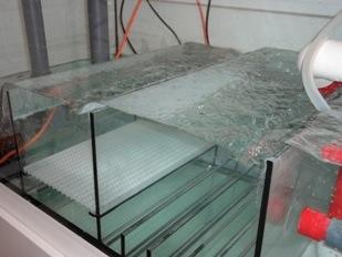 meerwasser aquarium blog 2011 fotos tipps und tricks. Black Bedroom Furniture Sets. Home Design Ideas
