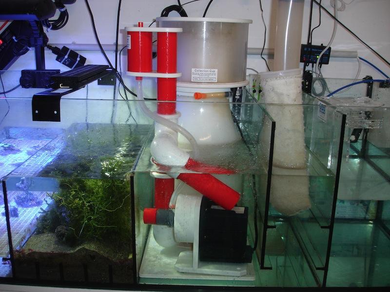 25 m rz 2013 grossreinmachen im technikbecken meerwasser aquarium blog 2013 fotos tipps und. Black Bedroom Furniture Sets. Home Design Ideas